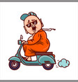fat buddha in sunglasses rides a scooter vector image vector image