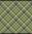 green check plaid tartan seamless pattern vector image vector image