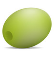 natural green olive icon realistic style vector image