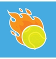 Tennis ball isolated team icon vector image vector image