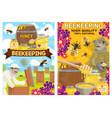 beekeeping equipment honey farm bee and beekeeper vector image