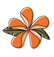 flower with petals orangr vector image vector image