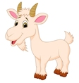 Goat cartoon character vector image vector image