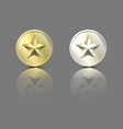 gold and silver stars on a coin with reflection vector image vector image