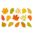hand drawn set of isolated autumn leaves vector image vector image