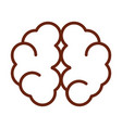 human body brain cerebral hemisphere anatomy organ vector image vector image