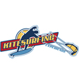 Kite surfing vector image vector image