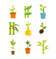 plant icon set flat style vector image