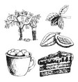 cocoa products hand drawn sketch doodle vector image