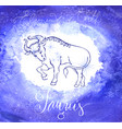astrology sign aries vector image vector image