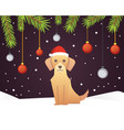 christmas banner template with dog balls ribbons vector image
