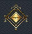 elegance style golden frame vector image