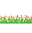 green grass tulip flowers border frame vector image vector image