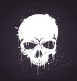hand drawn white skull with splash effects vector image vector image
