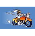 Motorized cartoon Easter Bunny vector image