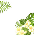 tropical flower bouquet for your summer vacation vector image vector image