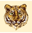 with tiger vector image