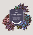 badge design with colored succulent echeveria vector image