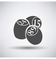 Bingo Kegs Iicon vector image vector image
