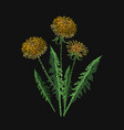 blooming dandelion flower embroidered with vector image