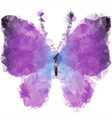 Bright violet butterfly vector image
