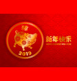 chinese new year year pig vector image