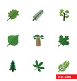 flat icon nature set of park spruce leaves vector image vector image