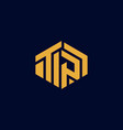 letter tp building hexagon modern industrial busin vector image vector image