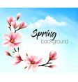 spring nature background with pink blooming vector image