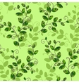Sweet pea seamless pattern vector image