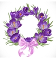 Wreath of purple crocus with pink ribbon vector image