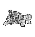 cartoon turtle with shell house sketch vector image vector image