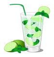 Cocktail with mint and lime vector image