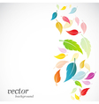 leaves design vector image vector image