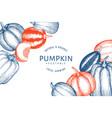 pumpkin design template hand drawn thanksgiving vector image vector image