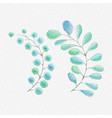 watercolor leaves painting on art vector image