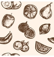 Collection of hand-drawn fruits vector image