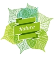 Background of stylized green leaves vector image vector image