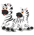 funny zebra cartoon with her baby vector image
