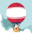 hot air balloon with penguin flat