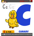 letter c from alphabet with cartoon canary bird vector image vector image