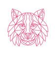 lynx bobcat head mono line vector image vector image
