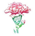 Pink carnation flower sketch icon vector image vector image