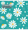 white daisy flower pattern on pastel mint green vector image vector image