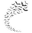 bats swarm silhouette vector image vector image