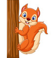 cartoon cute squirrel climbing on a tree vector image vector image
