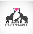 family elephants and pink heart on white vector image vector image