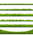 grass border big collection vector image
