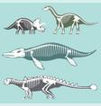 dinosaurs skeletons silhouettes set fossil bone vector image