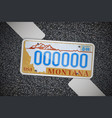 montana auto license plate on the asphalt vector image vector image